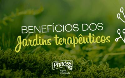 Jardins Terapêuticos e seus Benefícios