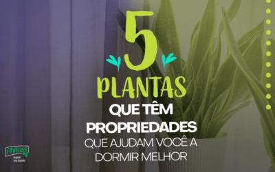 5 Plantas que têm propriedades que ajudam você a dormir melhor