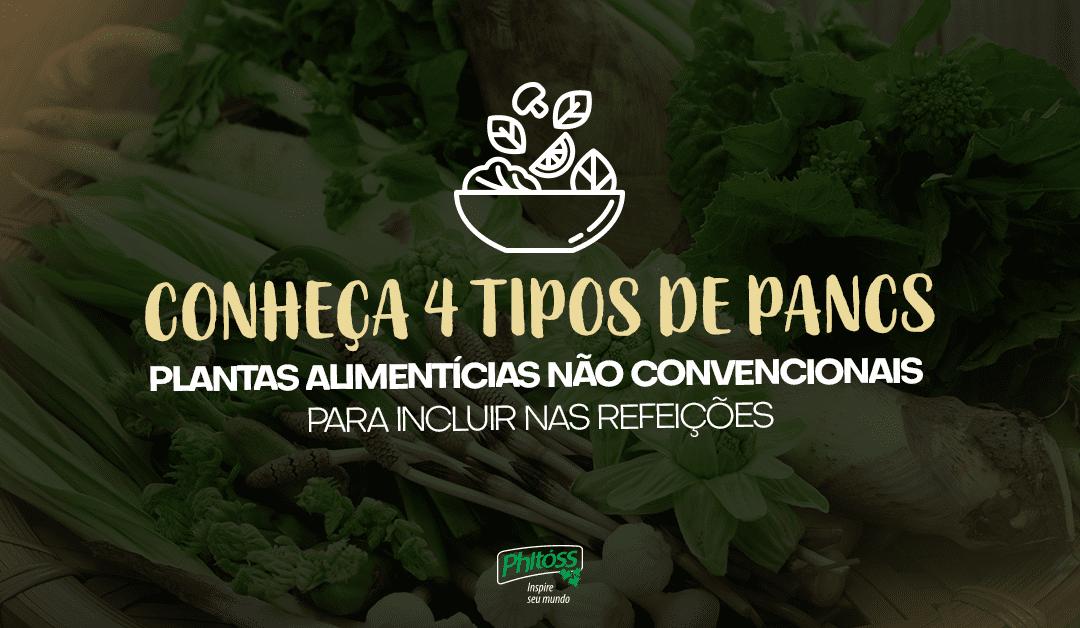 Conheça 4 tipos de PANCS  – Plantas Alimentícias Não Convencionais – para incluir nas refeições