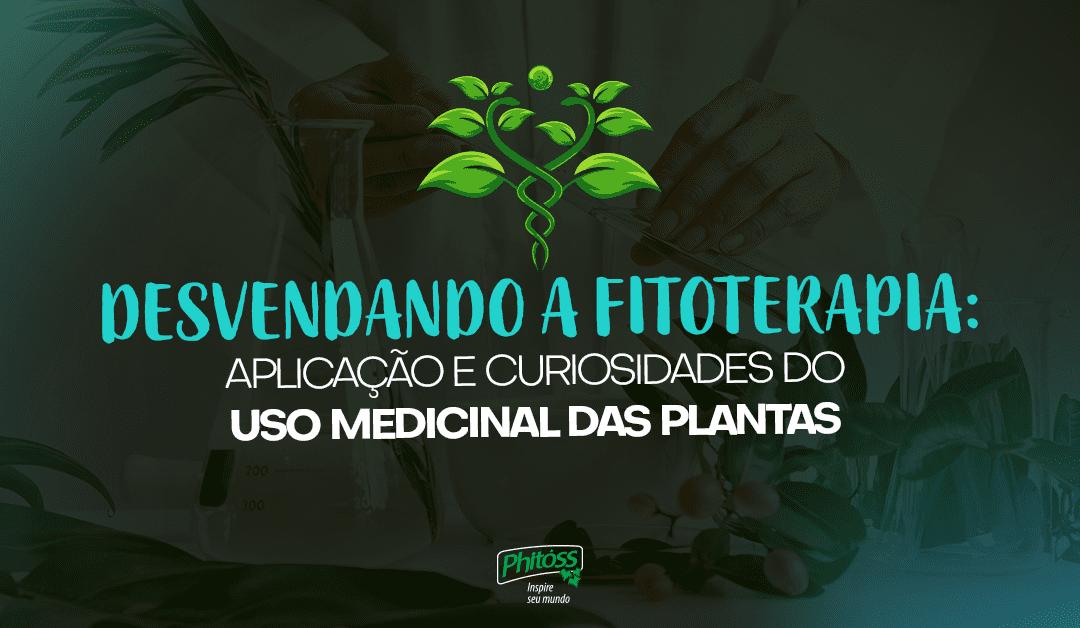 Desvendando a fitoterapia: Aplicação e curiosidades do uso medicinal das plantas