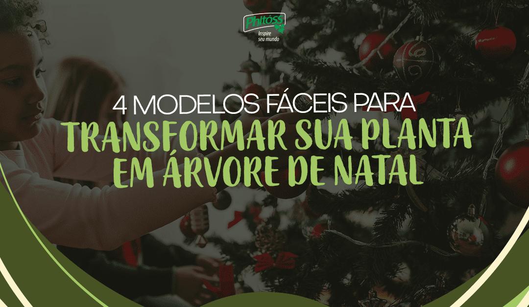 4 modelos fáceis para transformar sua planta em árvore de Natal
