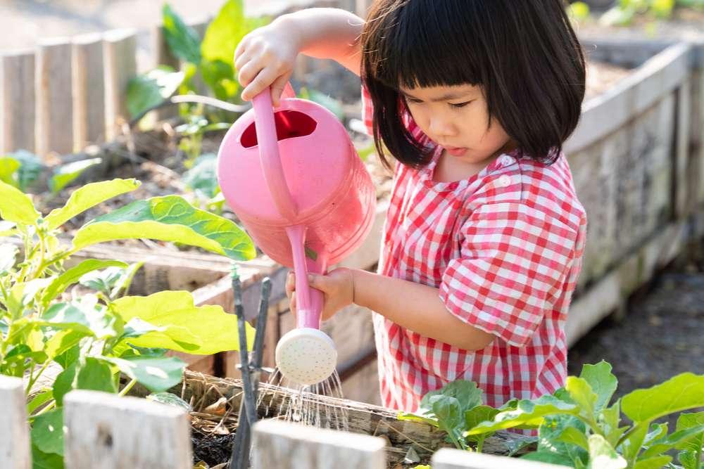 garota regando plantas